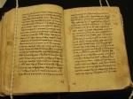 New Testament Parchment