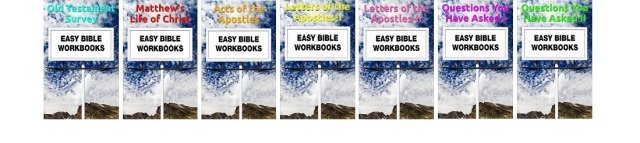 0-Strip Of All Workbooks-LookSmaller